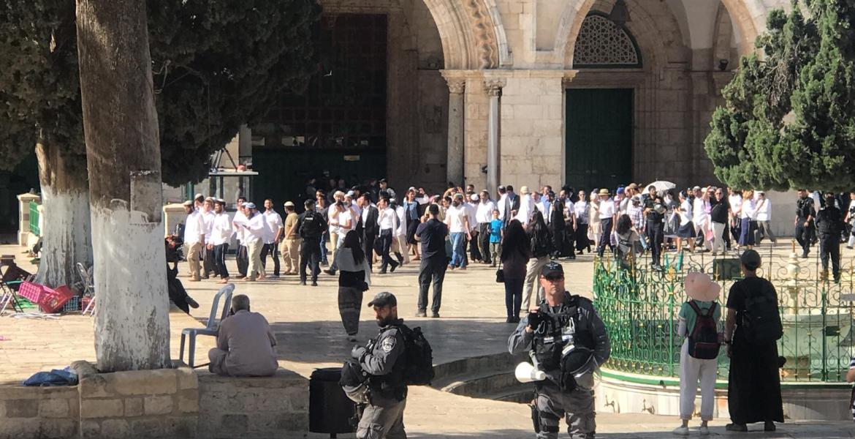 جنود الاحتلال خلال حراستهم لمئات المستوطنين أثناء اقتحامهم لباحات المسجد الأقصى المبارك صباح اليوم
